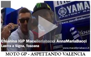 MotoGP - Aspettando Valencia 2015 - Valentino Rossi - Antica Macelleria Bacci